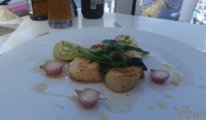 Haven Lunch | Diver Scallops