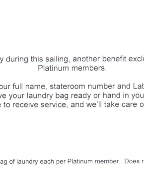 Platinum Laundry 2